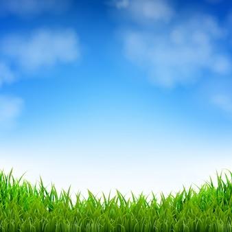 青い空とグラデーションメッシュ、イラストと草