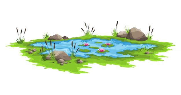 갈 대와 돌 주위 푸른 물 연못입니다. 자연 연못 야외 장면. 자연 경관 스타일에서 열린 작은 늪 호수의 개념. 봄 시즌 그래픽 디자인