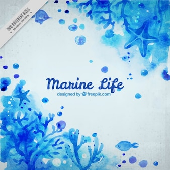 Blue watercolor marine background