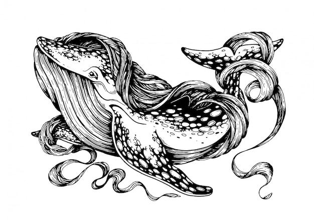 シロナガスクジラ。