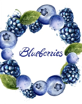 Blueberries frame watercolor