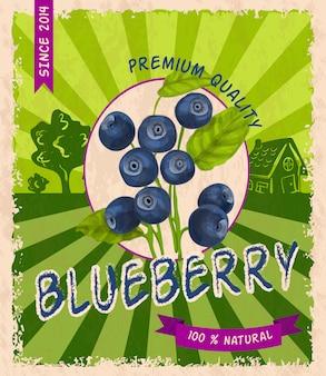Blueberry retro poster