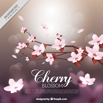 Blurred background of bokeh with branch and cherry blossoms