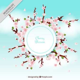 Blurred background with cherry blossoms