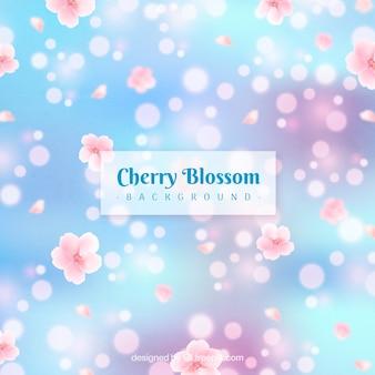 桜の背景がぼやけている