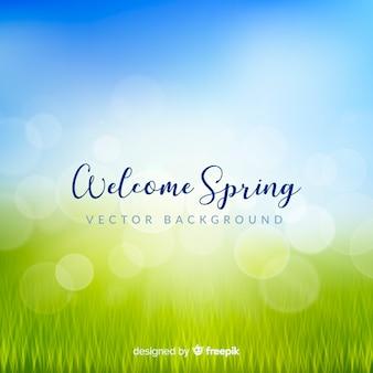 Blurred field spring background