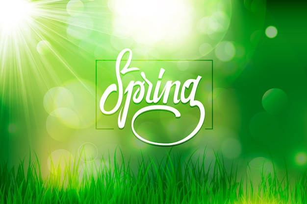 Blurred spring background with bokeh green effect and grass