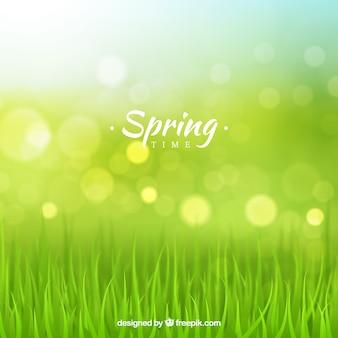 Blurry spring background
