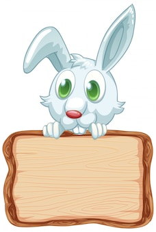 Board template with cute rabbit on white background