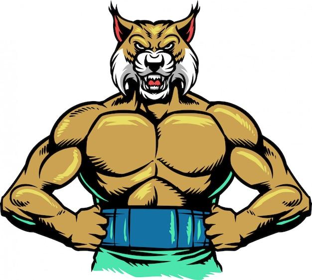 Bobcat muscle