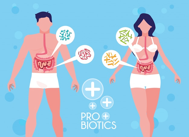 Body of man and woman with probiotics organisms