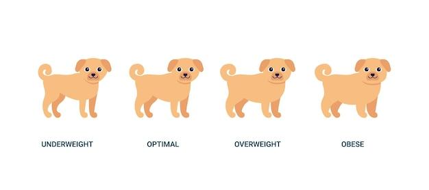 ボディマス指数犬チャート体重ペットbmi健康低体重最適太りすぎと肥満