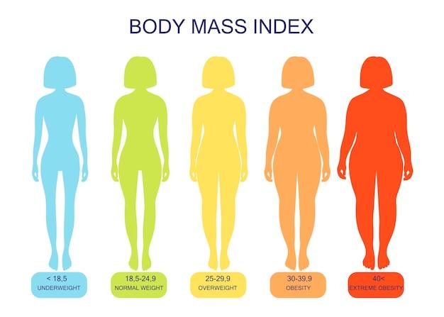 低体重から極度の肥満までのボディマス指数女性のシルエット