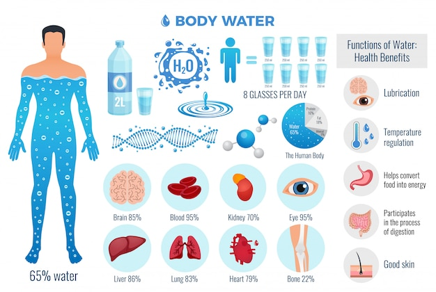 Body and water set with water functions, flat isolated vector illustration