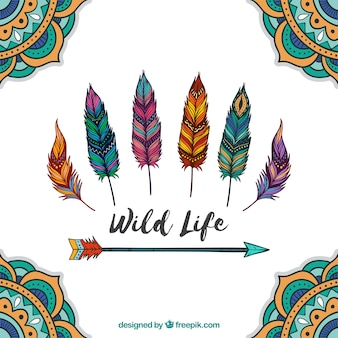 Boho background with hand drawn style