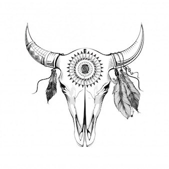 Boho buffalo skull with feathers and dream catcher. hand drawn sketch