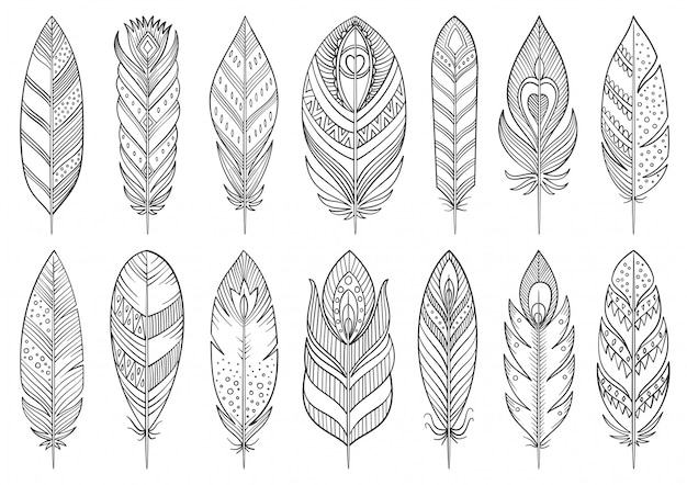 Boho feather hand drawn line set.