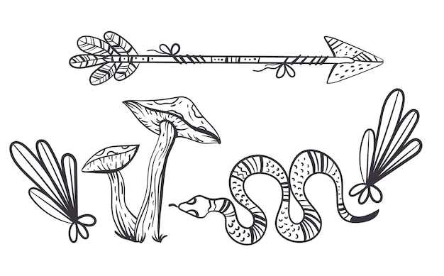 Boho 마녀 디자인 요소 개념