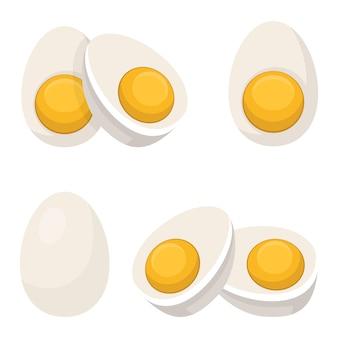 Boiled egg illustration isolated on white background