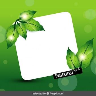 Bokeh con foglie