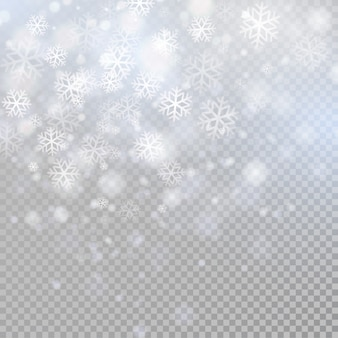 Bokeh light gray sparkles on transparency background glowing particles element for special effects.