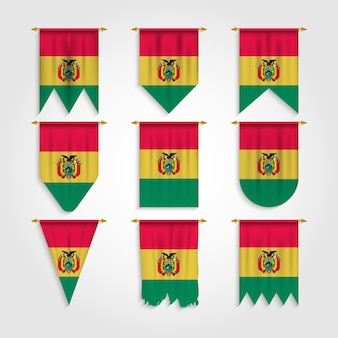 Bolivia flag in various shape
