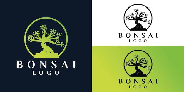 盆栽または木のロゴデザインのインスピレーションテンプレート