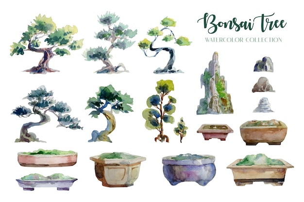 盆栽の木と鍋の水彩画の分離コレクション。