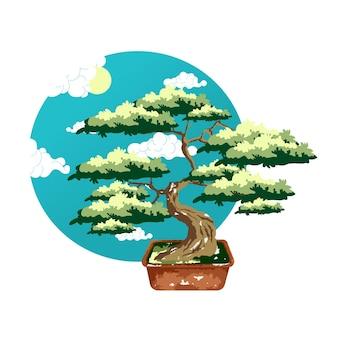 Бонсай в горшке. цветной вектор плоский мультфильм иллюстрации, изолированные на белом и круг небо