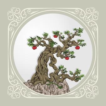 石の上の巻き枝を持つ盆栽