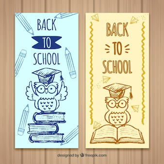 Book sketches and owl banners with mortarboard