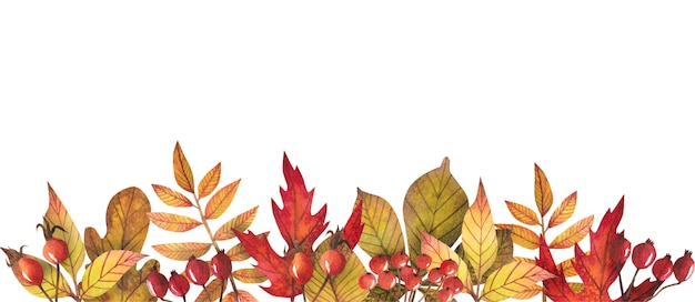 Border of autumn leaves painted by watercolor, design of autumn.