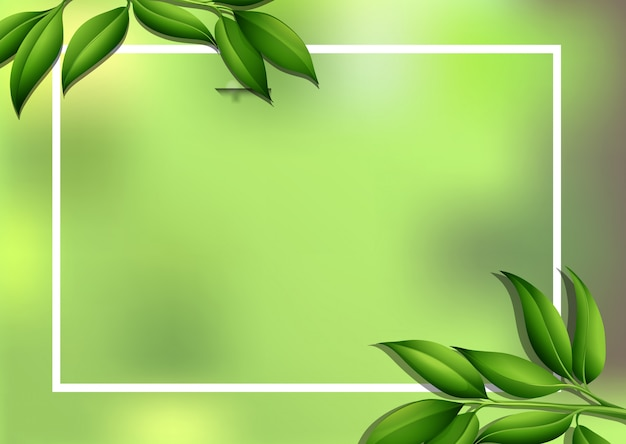 Border background with green leaves