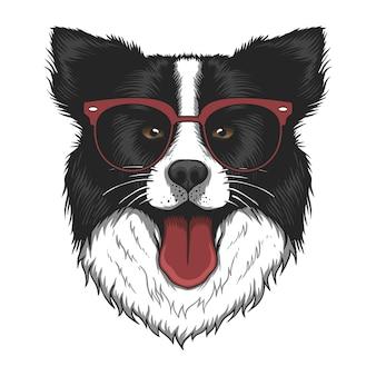 Border collie dog eyeglasses  illustration