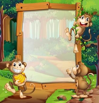 ジャングルの3匹の猿とのボーダーデザイン