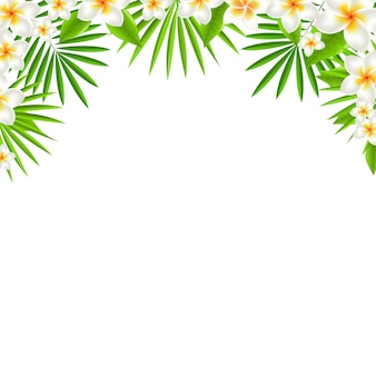 Border from frangipani, with gradient mesh,