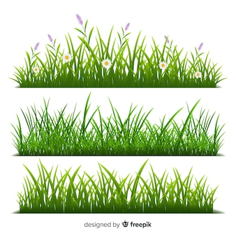 Border of grass realistic style