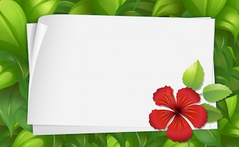 Border template with hibiscus flower