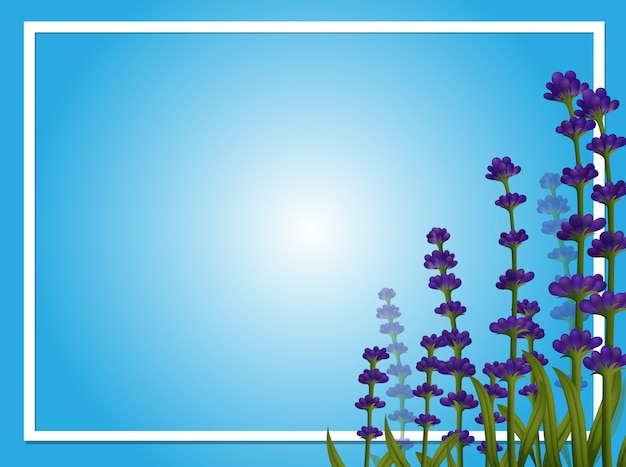 ラベンダーの花のボーダーテンプレート