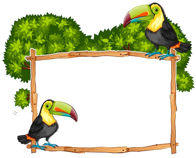 Border template with two toucan birds