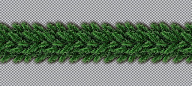 Border with christmas tree branches on transparent background. fir twig border.