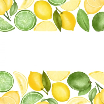 Borders of hand drawn lemons and limes, illustration on a white