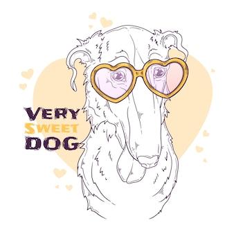 Портрет собаки борзой с аксессуарами