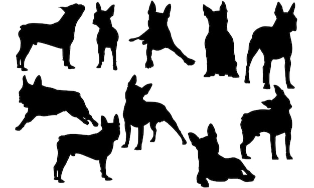 Boston terrier dog silhouette