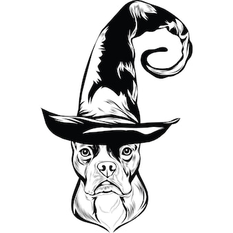 Boston terrier dog in witch hat for halloween