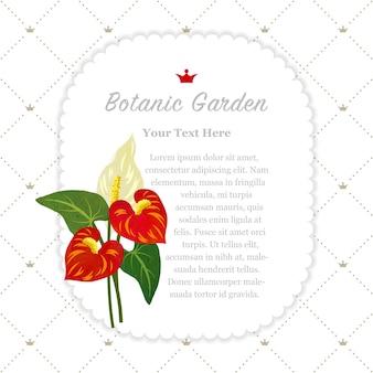 植物園フレーム赤いアンスリウムフラミンゴの花