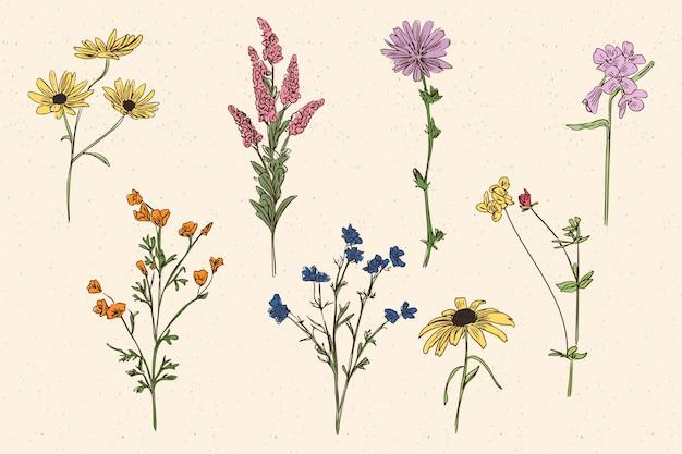 빈티지 스타일의 식물성 허브 & 야생화