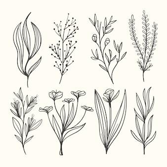 Botanic herbs & wild flowers in vintage style