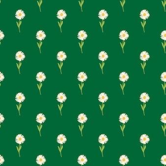 손으로 그린 흰 국화와 식물원 원활한 패턴