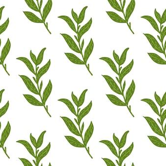 Ботанический бесшовный образец с простыми зелеными ветвями листьев